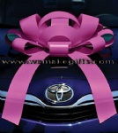 magnetic car bow